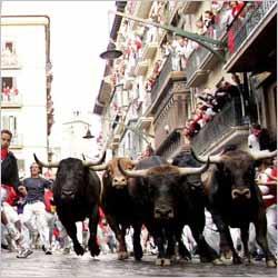 San Fermin, San Fermin Traditional Festival, Running of Bulls ...